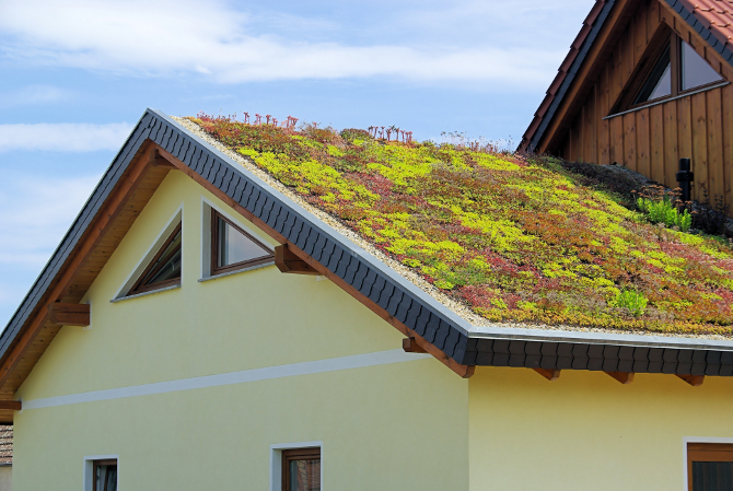 Green roofing ideas for your custom built home - Build green roof nature home ...