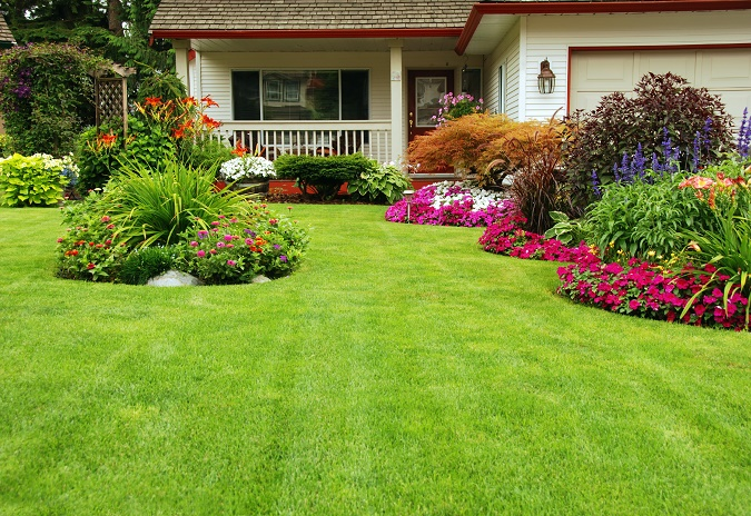 A Guide To Grass Varieties For Your Custom Home Lawn